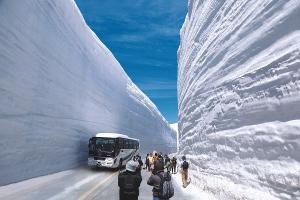 雪国におけるサングラスの重要性